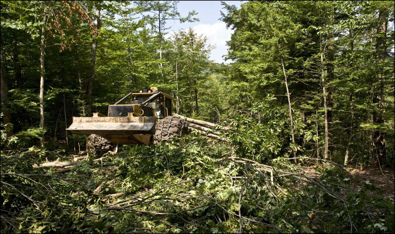 Responsible Logging