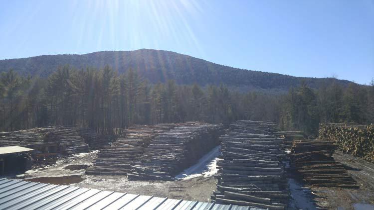 Responsible firewood company