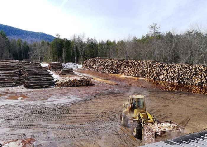 Kiln quality firewood