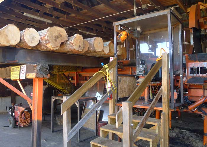 Quality clean firewood new england