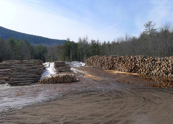 process of making safe firewood